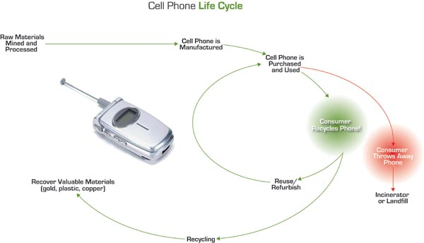 Cellular Phone Lifecycle