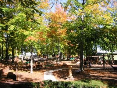 St. Johns City Park Opens in new window